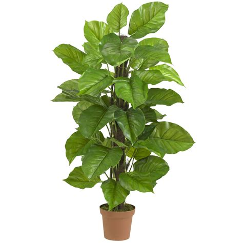 silk plants 52 inch large leaf philodendron potted 6583