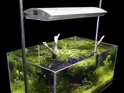 imagenes de ambientes naturales y artificiales definici 243 n de ecosistema artificial qu 233 es y concepto