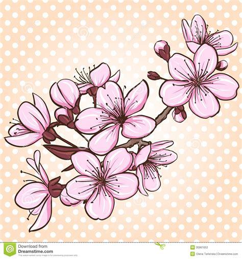 imagenes flores de cerezo flor del cerezo dibujo buscar con google cerezos