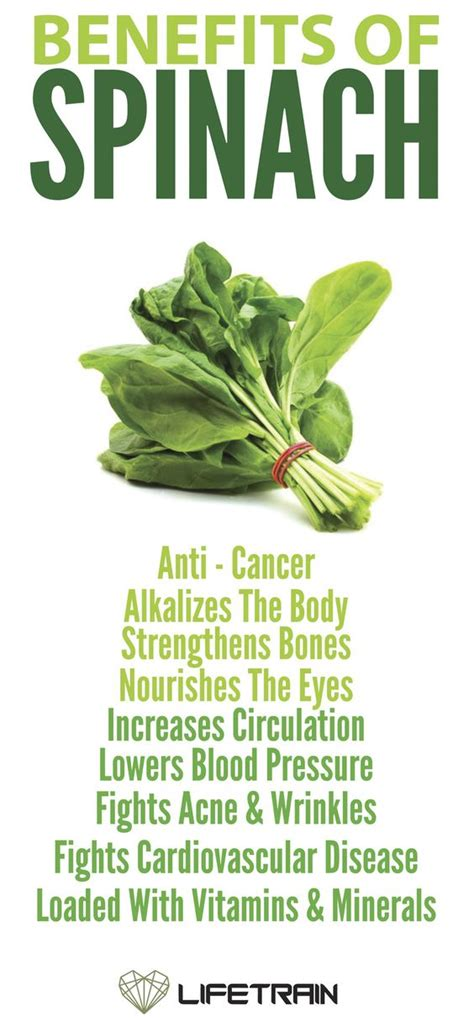Spinach Detox Benefits by Mma Health And Spinach On