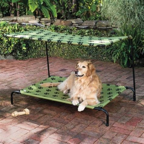 outdoor dog beds diy outdoor dog bed www imgkid com the image kid has it