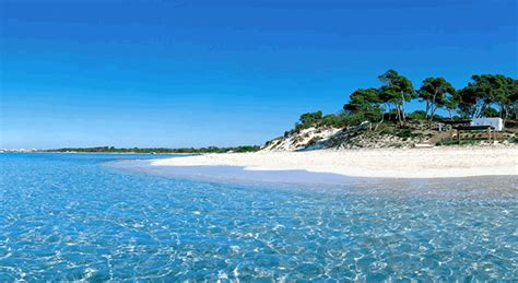best beaches mallorca the best beaches of mallorca images frompo