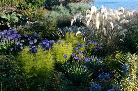 plantas para jardin mediterraneo plantas para jardines mediterraneos