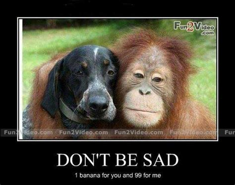 Dont Be Sad Meme - cheer up funny quotes quotesgram