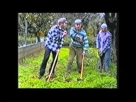 ufficio collocamento carini rusina i calabruzi live melbourne 2002 doovi