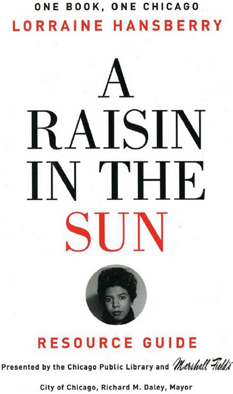 theme of race in a raisin in the sun a raisin in the sun one book one chicago spring 2003
