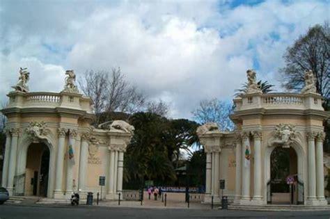 ingresso zoo roma bioparco rome italy hours address reviews tripadvisor
