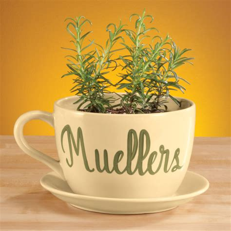 Personalized Planter by Personalized Teacup Planter Ceramic Planter Kimball