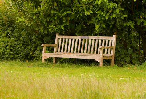 park bench pictures bench in park free stock photo public domain pictures