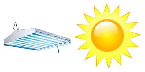 artificial sunlight l reviews light form grow lights vs sunlight t5 grow light fixtures