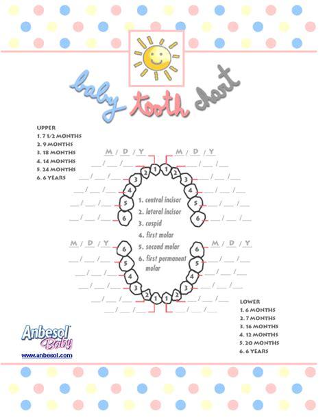 pediatric teeth diagram printable dental tooth chart www imgkid the image
