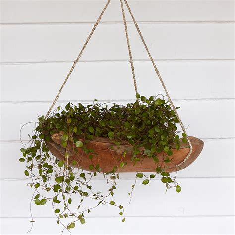 how to make hanging planters teak hanging planter 16 quot terrain