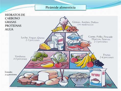 piramide alimentare oms piramide nutricional
