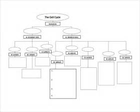 free concept map templates sle concept map template 10 free documents in pdf word