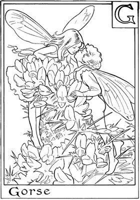libro fairies coloring book an 53 mejores im 225 genes de para pintar hadas princesas y sirenas en p 225 ginas para
