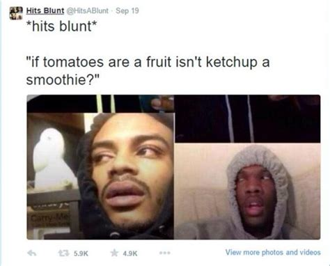 Funny Stoner Memes - the best of quot stoner thoughts quot 12 pics