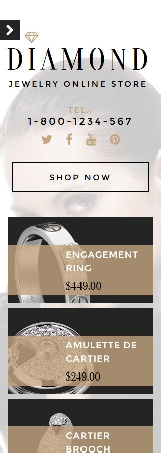 shopify themes for jewelry jewelry shopify theme