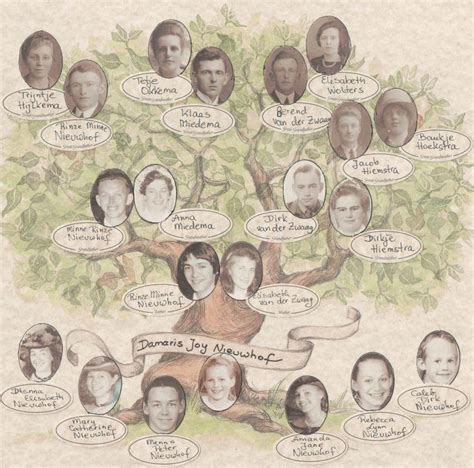 decorative family tree chart scrapbook your family tree