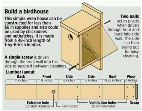 house finch birdhouse plans birdhouse plan for pj cabane d oiseaux et plan pinterest birdhouses