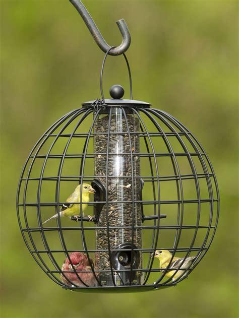 Gardeners Supply Bird Feeders 17 Beste Afbeeldingen A List Checking It