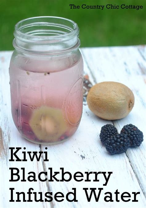 Blackberry Detox Water by 17 Best Images About Infuse It On Infused