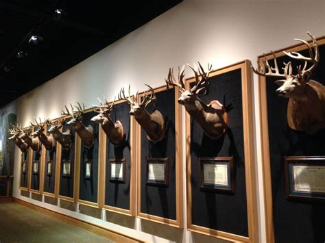 cabelas gun room everything cabela s has to offer for your date with a special someone
