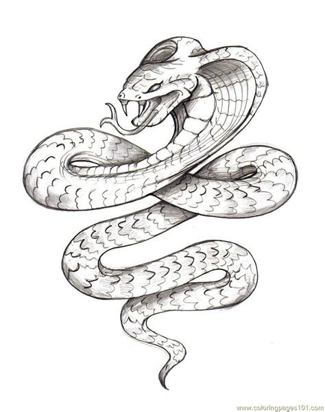 Coloring Pages Snake 3 Reptile Gt Snake Free Printable Coloring Pages Snake