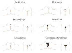 shapes trim their pubic hair pictures original file svg file nominally 807 215 597 pixels