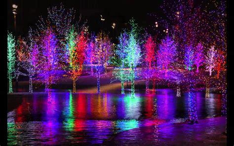 addison christmas lights