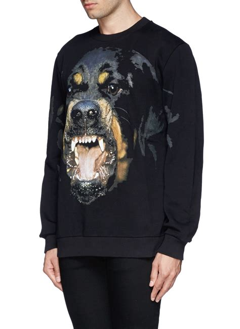 givenchy rottweiler sweatshirt givenchy rottweiler print sweatshirt in black for lyst