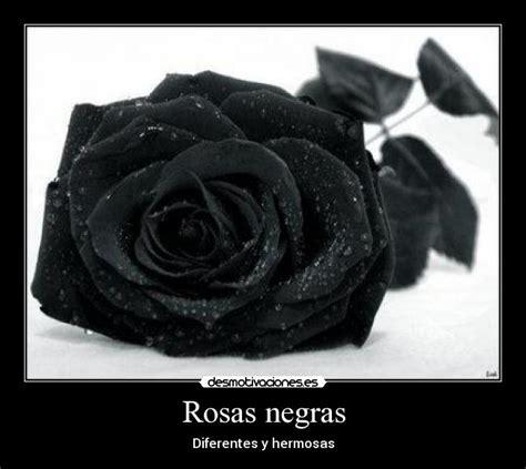 imagenes de rosas negras con frases de amor rosas negras desmotivaciones