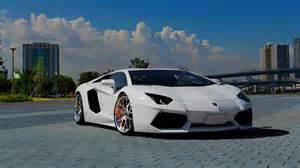 White And Lamborghini Lamborghini Aventador White Mystery Wallpaper
