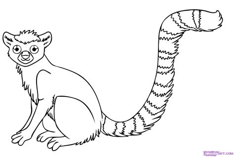 Lemur Coloring Pages lemur coloring pages and print for free