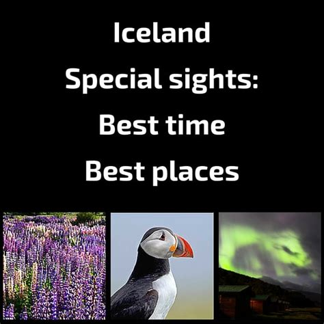 good place to see northern lights in iceland best time to visit iceland northern lights puffins