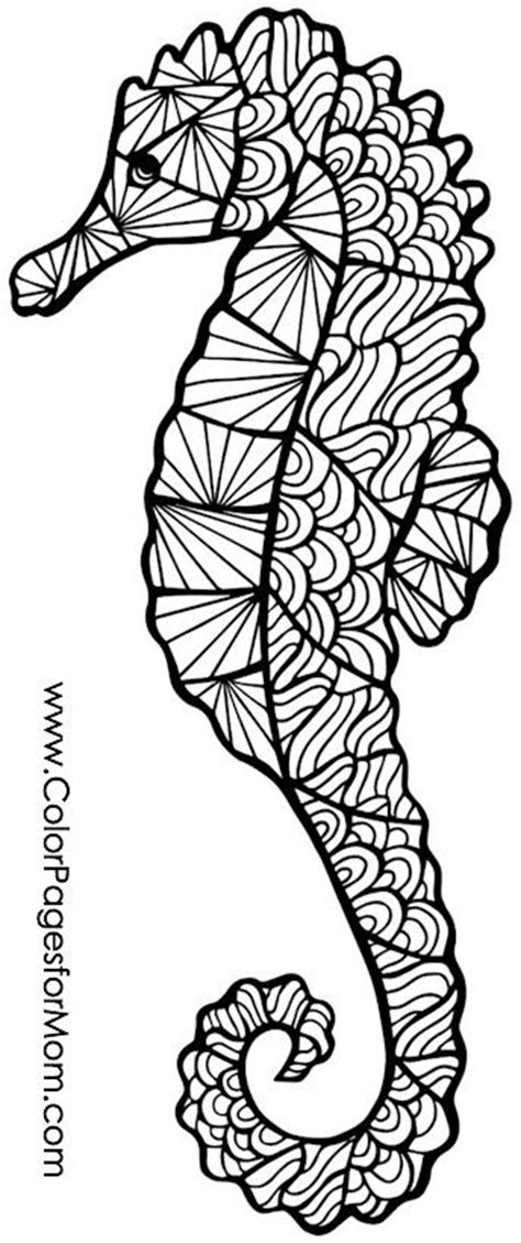 Hard Seahorse Coloring Pages | seahorse coloring page adult colouring under the sea