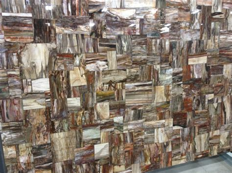Rustic Bedroom Ideas countertop slab of petrified wood by cosentino quot prexury