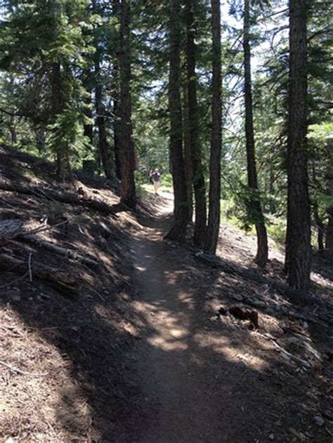 A Place Take 6 Tahoe Trail Lake Tahoe California Californien Anmeldelser