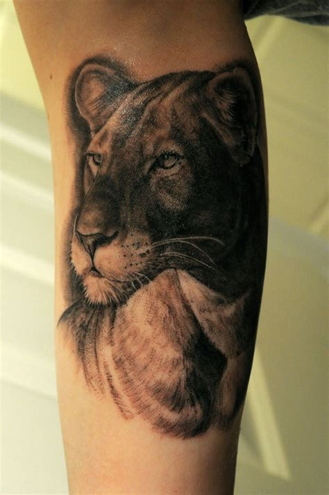 lion and lioness tattoo 26 best lioness tattoos images on lioness