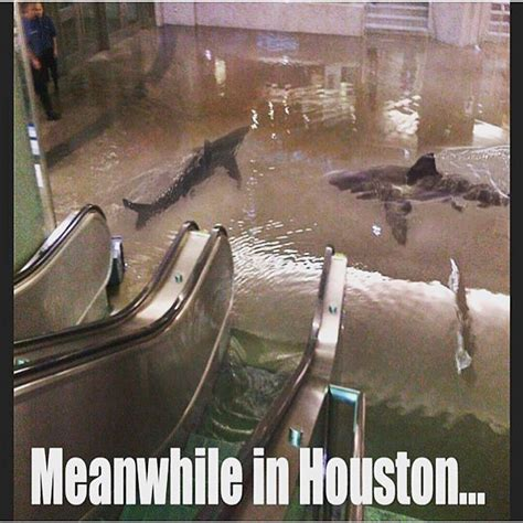 Flooded Basement Meme - really flood memes already c mon h town photos 97 9