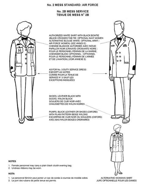 air cadet lesson plan template 7 air cadet lesson plan template mess dress 608 quot