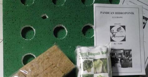 Paket Hemat Benih Bunga 7 Jenis Murah Meriah griya hidroponikku paket bertanam hidroponik murah