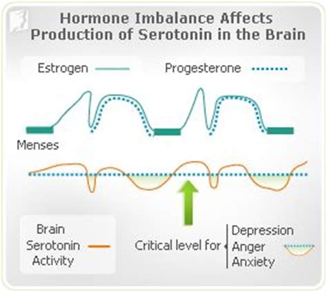 hormonal imbalance mood swings 17 best ideas about menstrual cycle on pinterest period