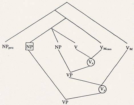 verb pattern raise liliane haegeman henk van riemsdijk verb projection