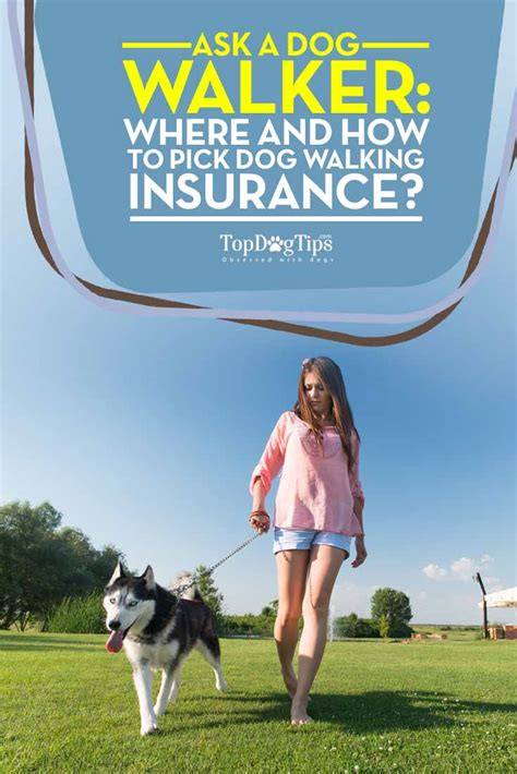 walking insurance ask a walker where and how to walking insurance top tips