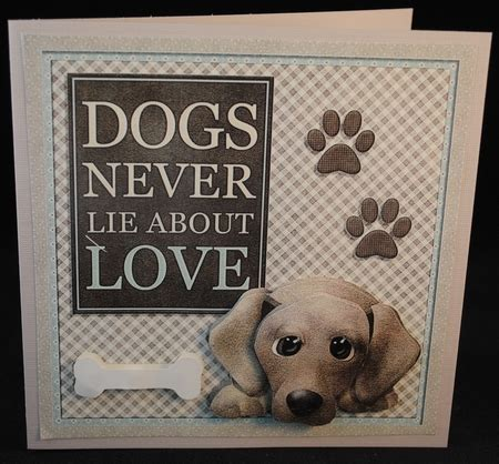 the animals never lie books dogs never lie photo by yvonne middleton