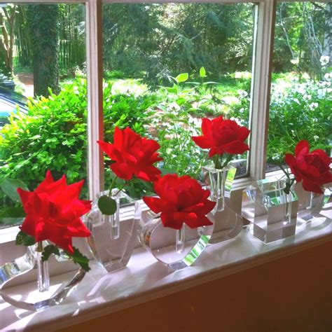 Flowers On Window Sill Discover And Save Creative Ideas