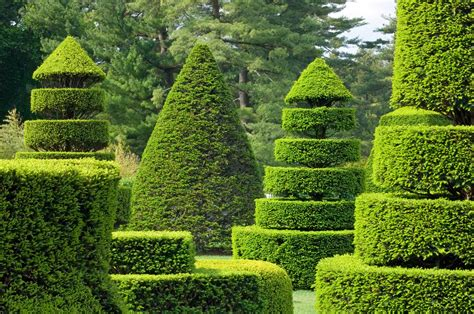 Topiary Gardens by Longwood Gardens