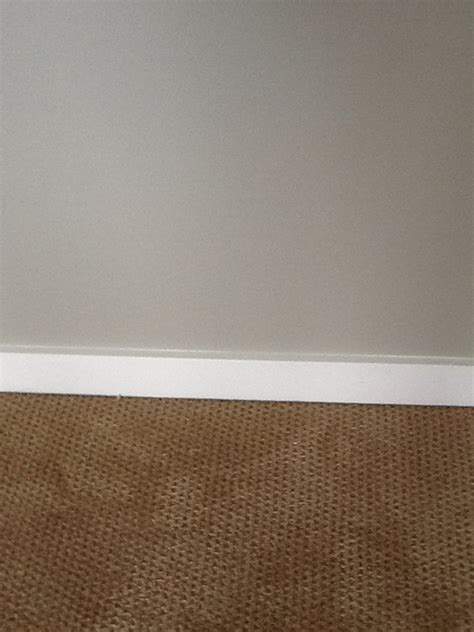 anew gray walls white trim carpet color walls floors trim coats carpets