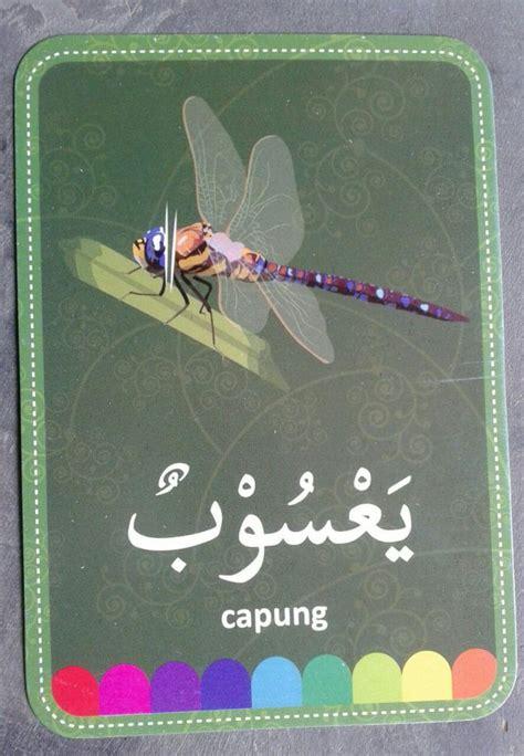 flash cards huruf hijaiyah belajar islam dan bahasa arab