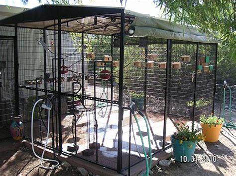backyard aviary outdoor bird aviaries bird cages aviary pinterest